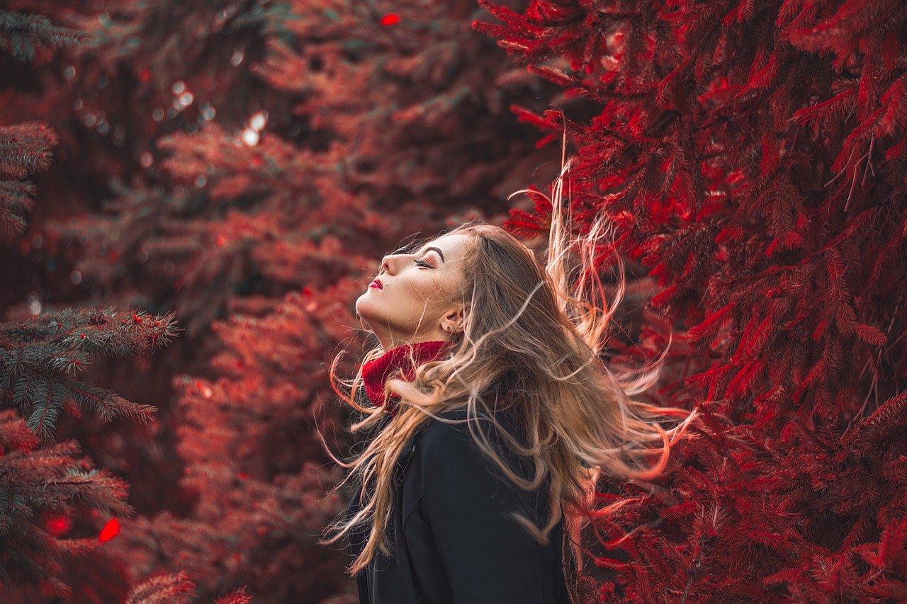 portrait, autumn, red-4599559